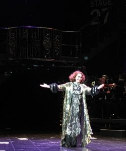 Ria Jones dazzles as Norma Desmond (photo courtesy of Kevin Wilson)